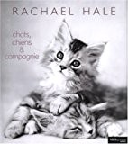 Chats, chiens & compagnie