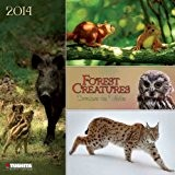 Forest Creatures 2014