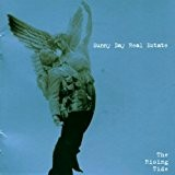 The Rising Tide by Sunny Day Real Estate (2000-06-20)